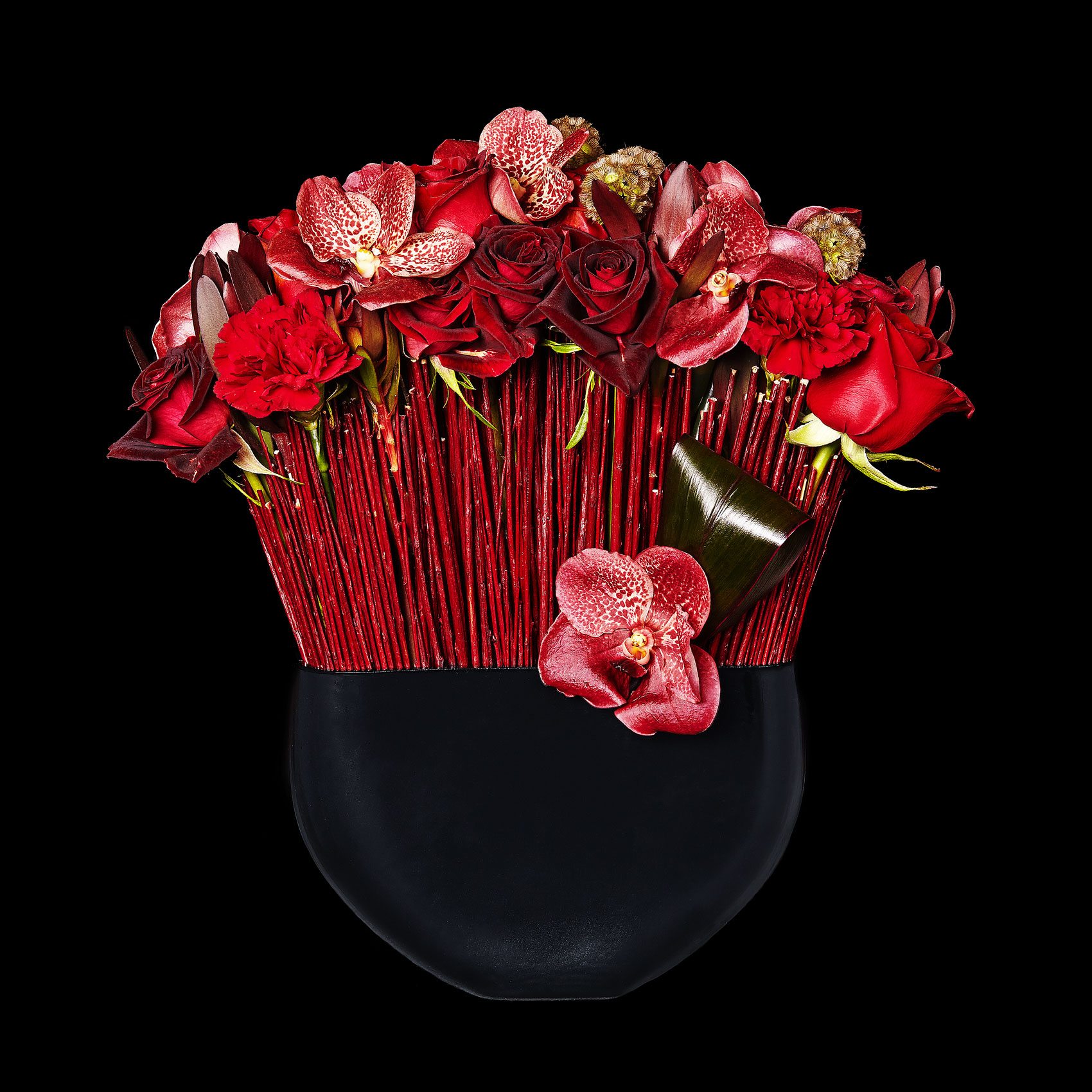 roses-orchids_red_floral_arrangement_valentines-day_ovando_ty-mecham